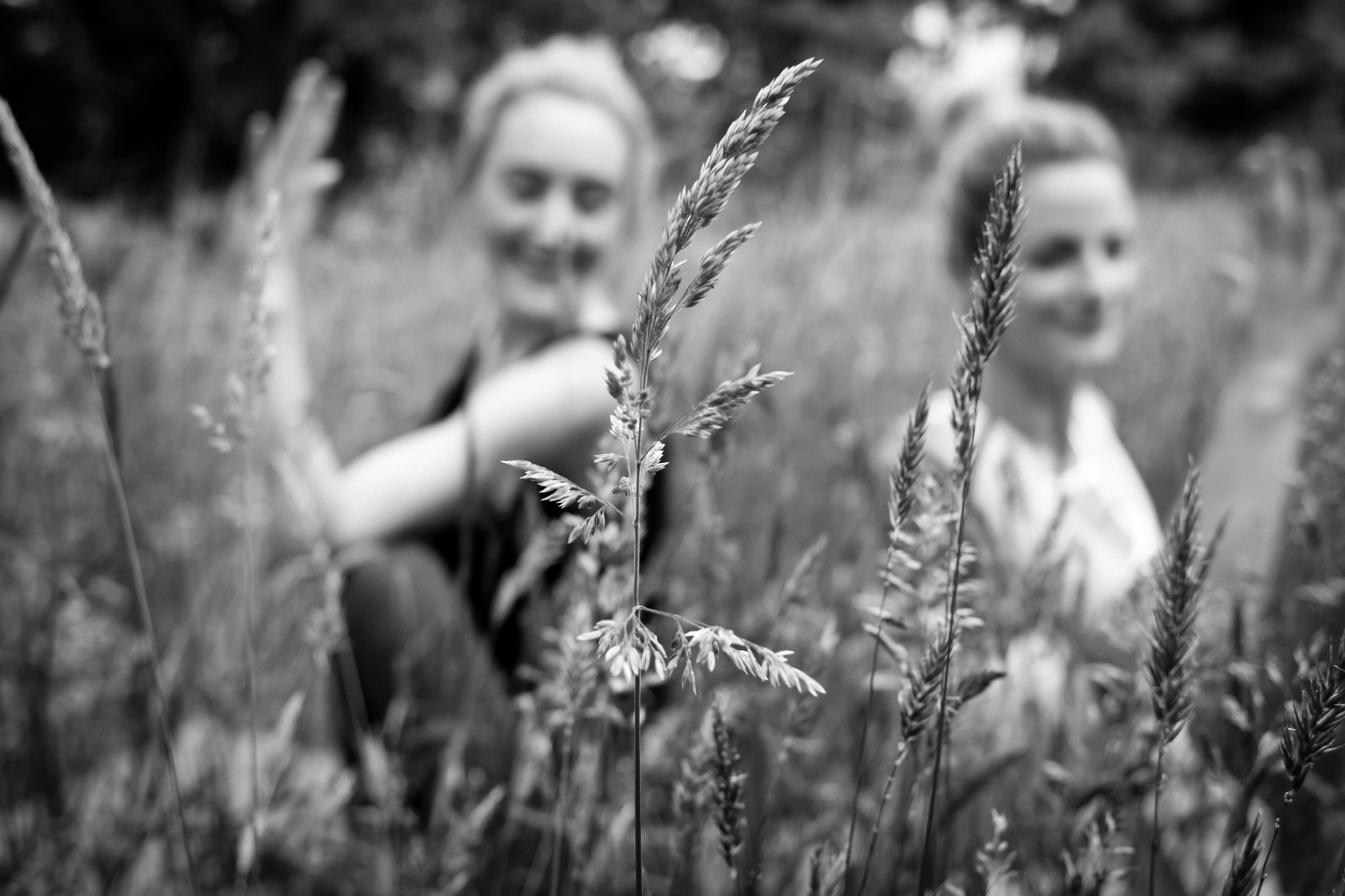 Yoga in a field near Upwey
