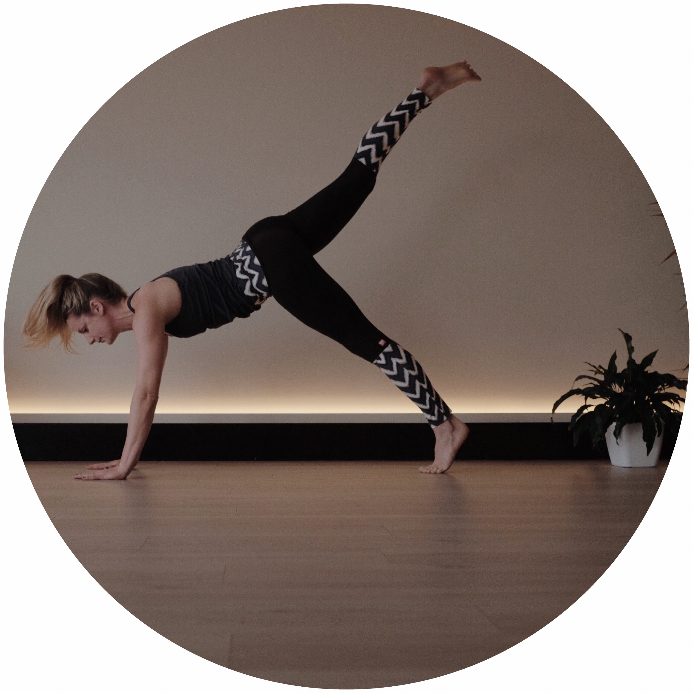 Express Vinyasa Classes in Rowville